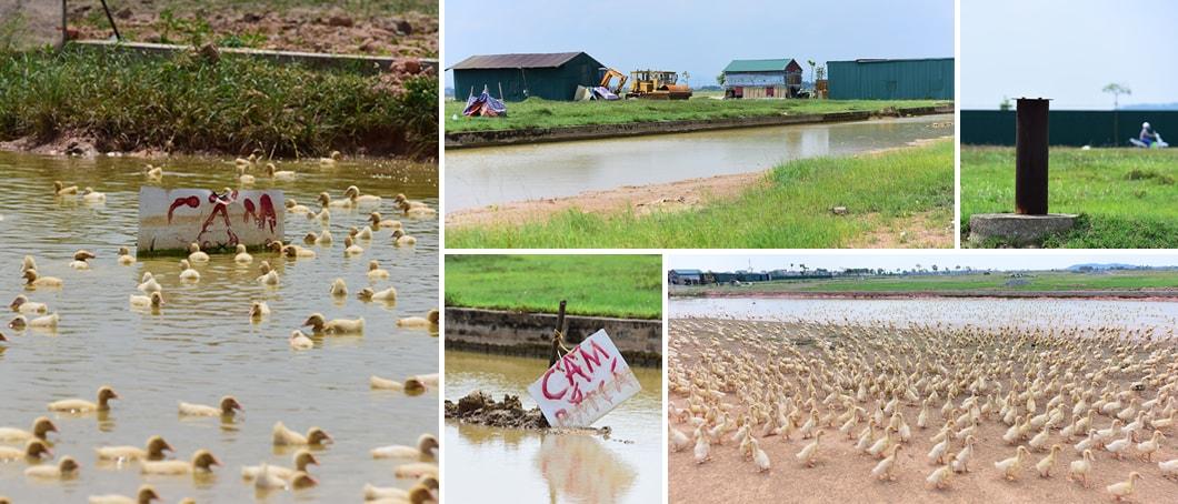 Khung cảnh những dự án treo tại Mê Linh